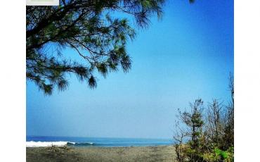 Pantai Goa Cemara | Jasa Sewa Drone Jogja